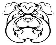 Bulldog character face. An illustration of a cartoon tough bulldog character face Stock Photography