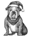 Bulldog with christmas hat Royalty Free Stock Photos