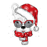 Bulldog in a Christmas hat and sunglasses. Cute puppy. Pedigree dog. W Royalty Free Stock Images