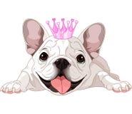 Bulldog della sovranità Fotografia Stock