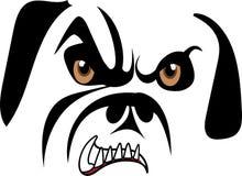 Bulldog di ringhio Immagini Stock Libere da Diritti