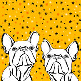Bulldog dog animal french vector illustration pet breed cute drawing puppy Stock Images