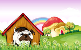 A bulldog in the doghouse near the giant mushrooms Stock Photo