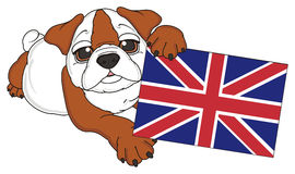 Bulldog with flag Royalty Free Stock Images