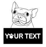 Bulldog francese del cucciolo disegnato a mano con il posto per il vettore del testo Sorriso felice del bulldog francese del fume Immagini Stock