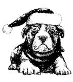 Bulldog with hat. Image of black and white bulldog with hat, hand draw vector. Use for Chrismas day Stock Photography
