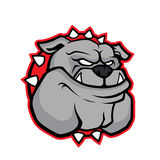 Bulldog head mascot Stock Photos