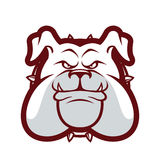 Bulldog head mascot Stock Photo