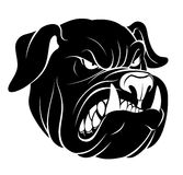 Bulldog head monochrome Royalty Free Stock Photo
