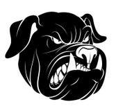 Bulldog head monochrome. Vector bulldog head isolated on the white background Royalty Free Stock Photo