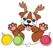 Bulldog with holidays toys Stock Images
