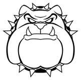 Bulldog. Illustrator desain .eps 10 Stock Photography