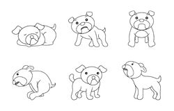 Bulldog. Illustrator design .eps 10 Vector Illustration