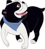 Bulldog inglese allegro Immagine Stock Libera da Diritti