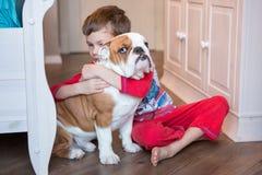 Bulldog inglese nella vita godente domestica alla moda Fotografia Stock Libera da Diritti