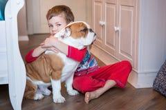 Bulldog inglese nella vita godente domestica alla moda Fotografie Stock Libere da Diritti