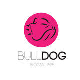 Bulldog Logo Concept Royalty Free Stock Image