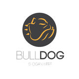 Bulldog Logo Design Stock Images