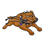 Bulldog mascot biting cables. Vector illustration royalty free illustration