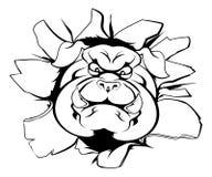 Bulldog mascot breakthrough Stock Image