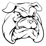Bulldog mascot character. A black and white illustration of a fierce bulldog animal character or sports mascot Royalty Free Stock Photography