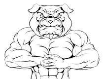 Bulldog Mascot Stock Image