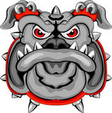 Bulldog Mascot Head Stock Photo