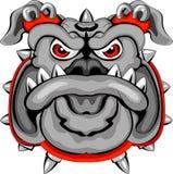 Bulldog Mascot Head Stock Photo