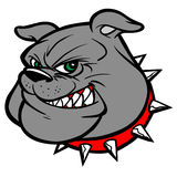 Bulldog Mascot Head Stock Image
