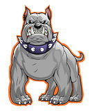 Bulldog mascot Royalty Free Stock Photography