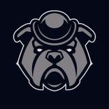 Bulldog nell'icona di vettore della mascotte del cappello illustrazione di stock