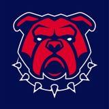 Bulldog nella mascotte appuntita di vettore del collare royalty illustrazione gratis