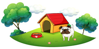 A bulldog outside its dog house Stock Photo