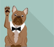 Bulldog with paw up vector Royalty Free Stock Photos