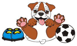 Bulldog play to soccer Royalty Free Stock Image