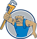 Bulldog Plumber Monkey Wrench Circle Cartoon Stock Image