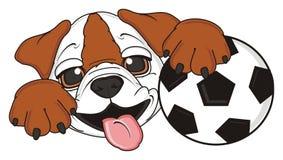 Bulldog with soccer ball Stock Photos