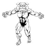 Bulldog sports mascot. Cartoon scary bulldog animal sports mascot illustration Stock Image