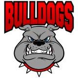 Bulldog Team Growl Stock Images