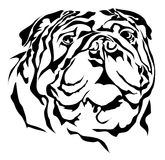 Bulldog  vector Royalty Free Stock Photography