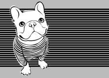 bulldogg fransman royaltyfri illustrationer