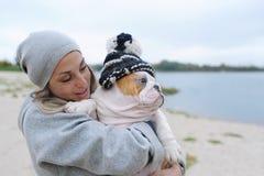 Bulldogge in einer warmen Kappe Stockbild