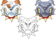 Bulldoggen Stockfoto