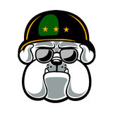 Bulldoggen-Armee-Maskottchen Lizenzfreies Stockbild