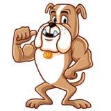 Bulldoggen-Karikatur-Maskottchen-Charakter lizenzfreie abbildung