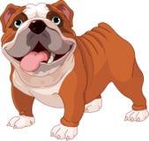 bulldoggengelska stock illustrationer