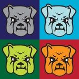 bulldoggframsida royaltyfri foto