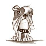 Bulldoggie Royalty Free Stock Images