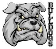 Bulldogs Sports Mascot Stock Photo