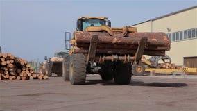 Bulldozer bij de zaagmolen, vervoer van logboeken, werkschema bij de zaagmolen stock video